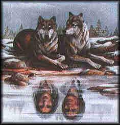 wolfwithnaref.jpg
